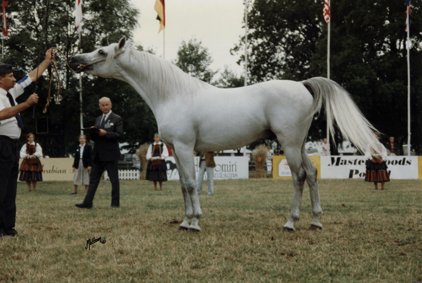 Eldon at the Polish National Show in 1992