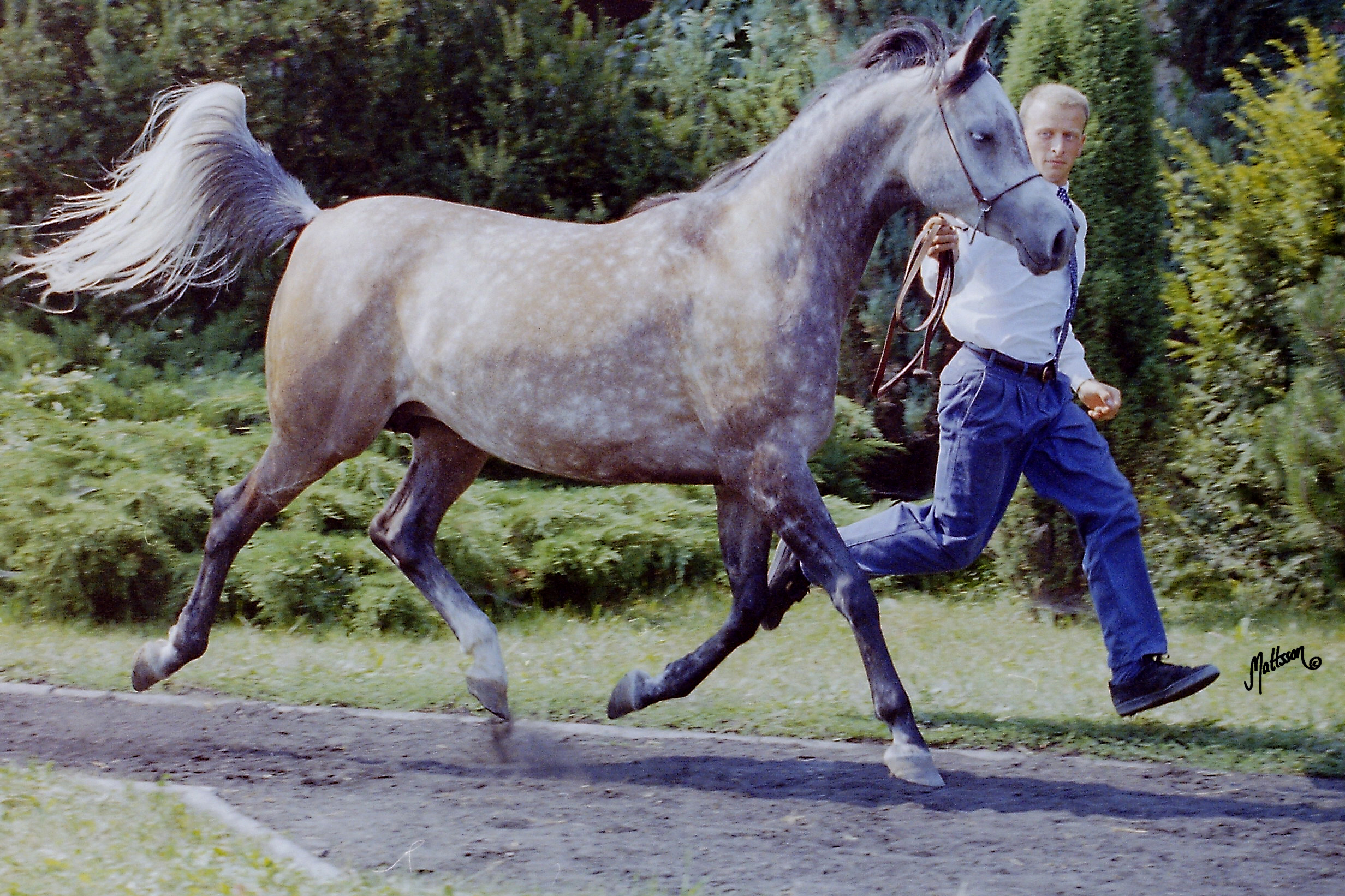 Gaskonia and Scott Benjamin in 1995