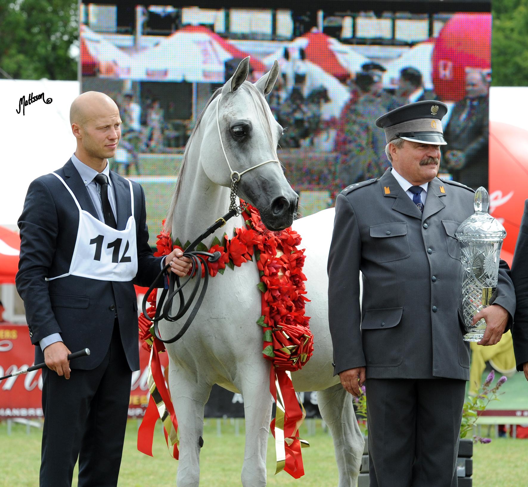 Palmeta - 2012 Polish National Champion Mare and Best in Show with Pawel Kozikowski and Director Marek Trela