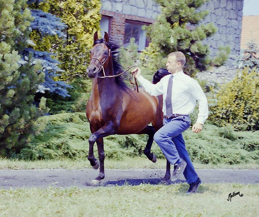 Wiazma and Scott Benjamin in 1995
